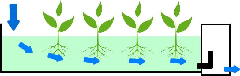 Princip kořenové čističky